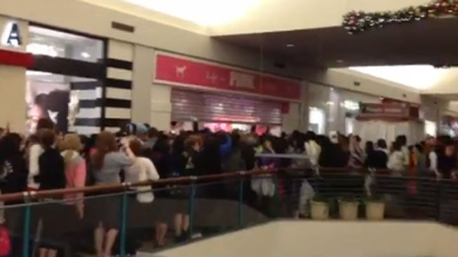 "Black Friday ""Crush of Bodies"" Closes Orland Square Mall Store for Two Hours"