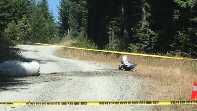 4 Killed After Small Medical Plane Crashes in California