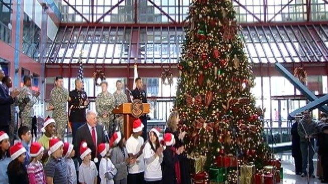 quinn lights state christmas tree
