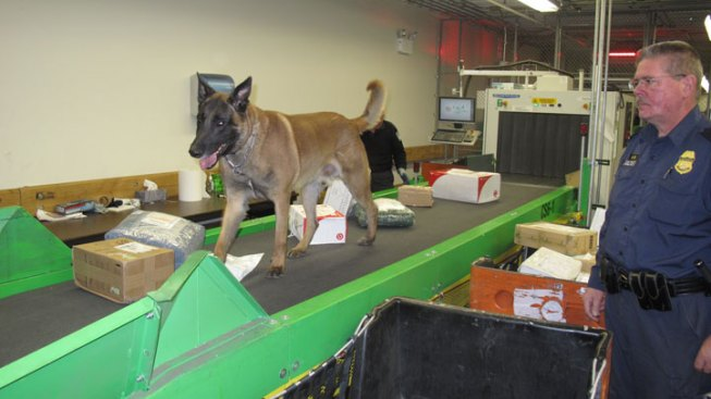 Drug Dog Finds $300K Worth of Opium in Mail Facility Near O'Hare