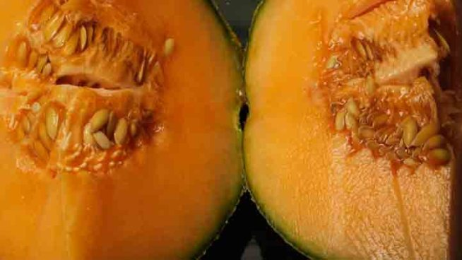 17 Salmonella Cases in Illinois Linked to Cantaloupes