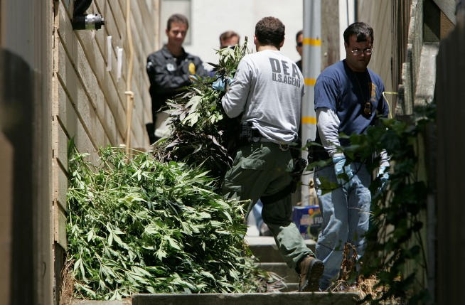 The Confused State of Pot Law Enforcement