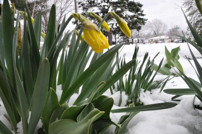 Brant Miller's Weather Photos: March 28 - April 3