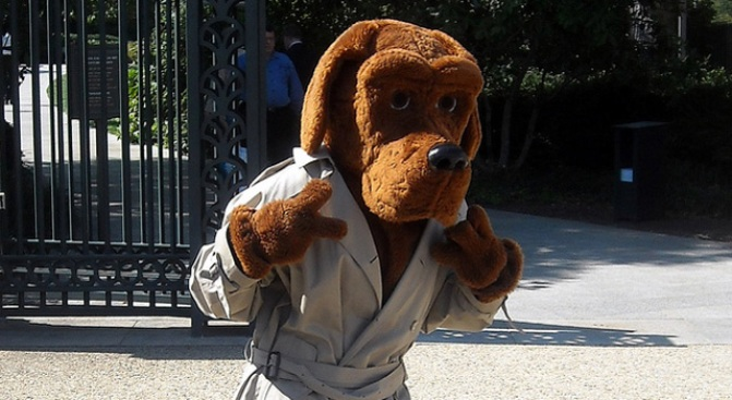 McGruff Survives a Beat-Down